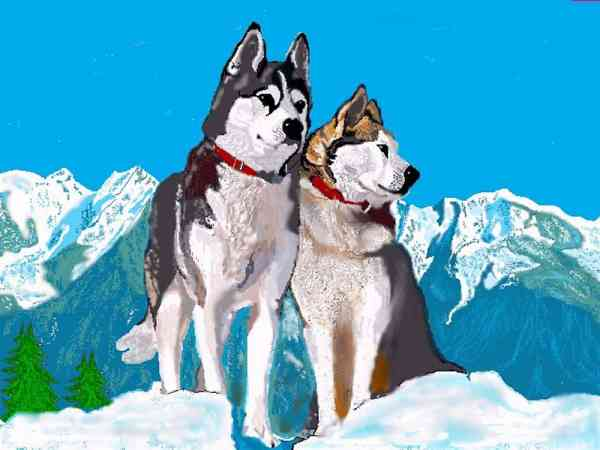 Chiens de traineau centerblog - Coloriage chien de traineau ...